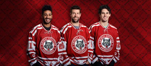 Chicago Wolves Animal Adoption Jerseys