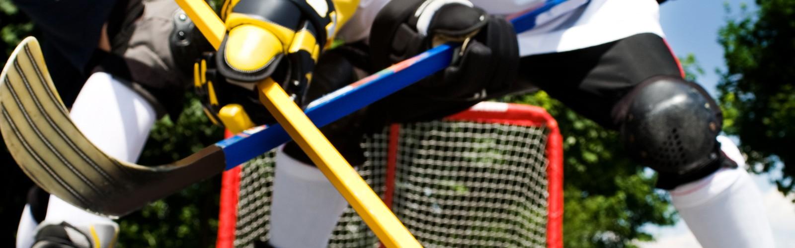Chicago Wolves Shinny Hockey Jamboree
