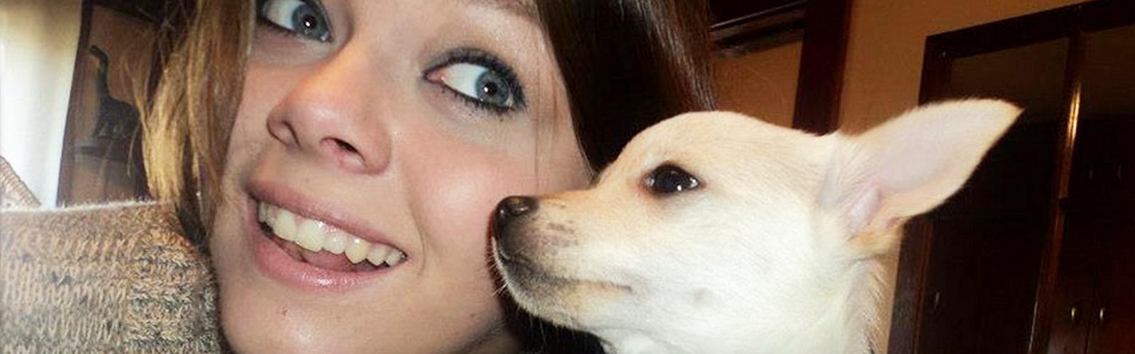 pet adoption in chicago