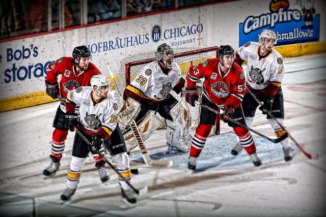 Chicago Wolves hockey team