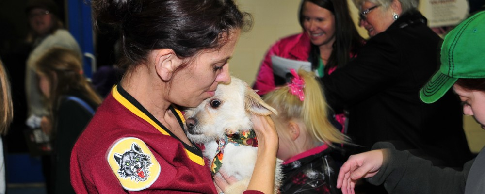 chicago wolves host dog adoption