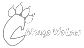 Hockey charities in Chicago