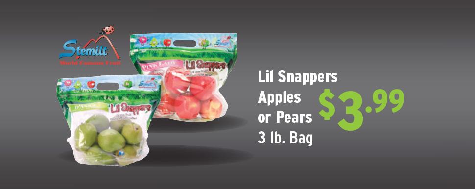 LilSnapper