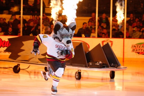 Here come the Wolves! Well, one wolf in particular. Skates sprints out to center ice during the Chicago Wolves' pregame show before Saturday's game against Lake Erie at Allstate, which marked the last meeting between the two teams this season. Photo: Dale Woltman/Chicago Wolves