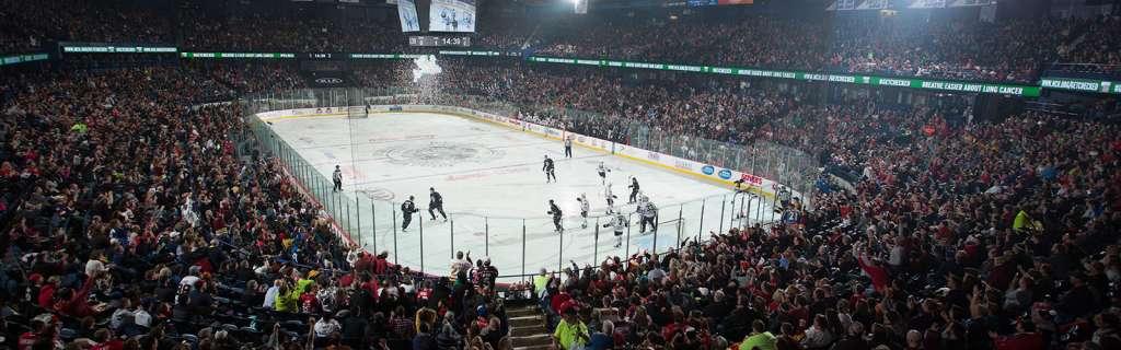 full-arena
