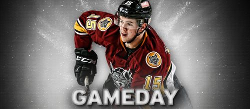 Chicago Wolves Charlotte Checkers Mackenzie MacEachern