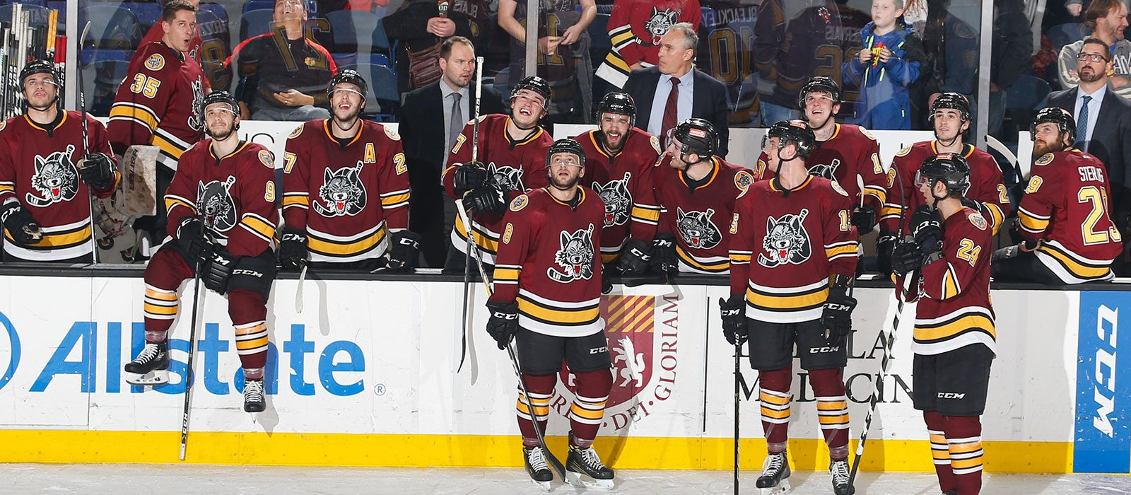 Chicago Wolves Roundup Cover