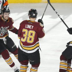 Chicago Wolves Calder Cup Playoffs