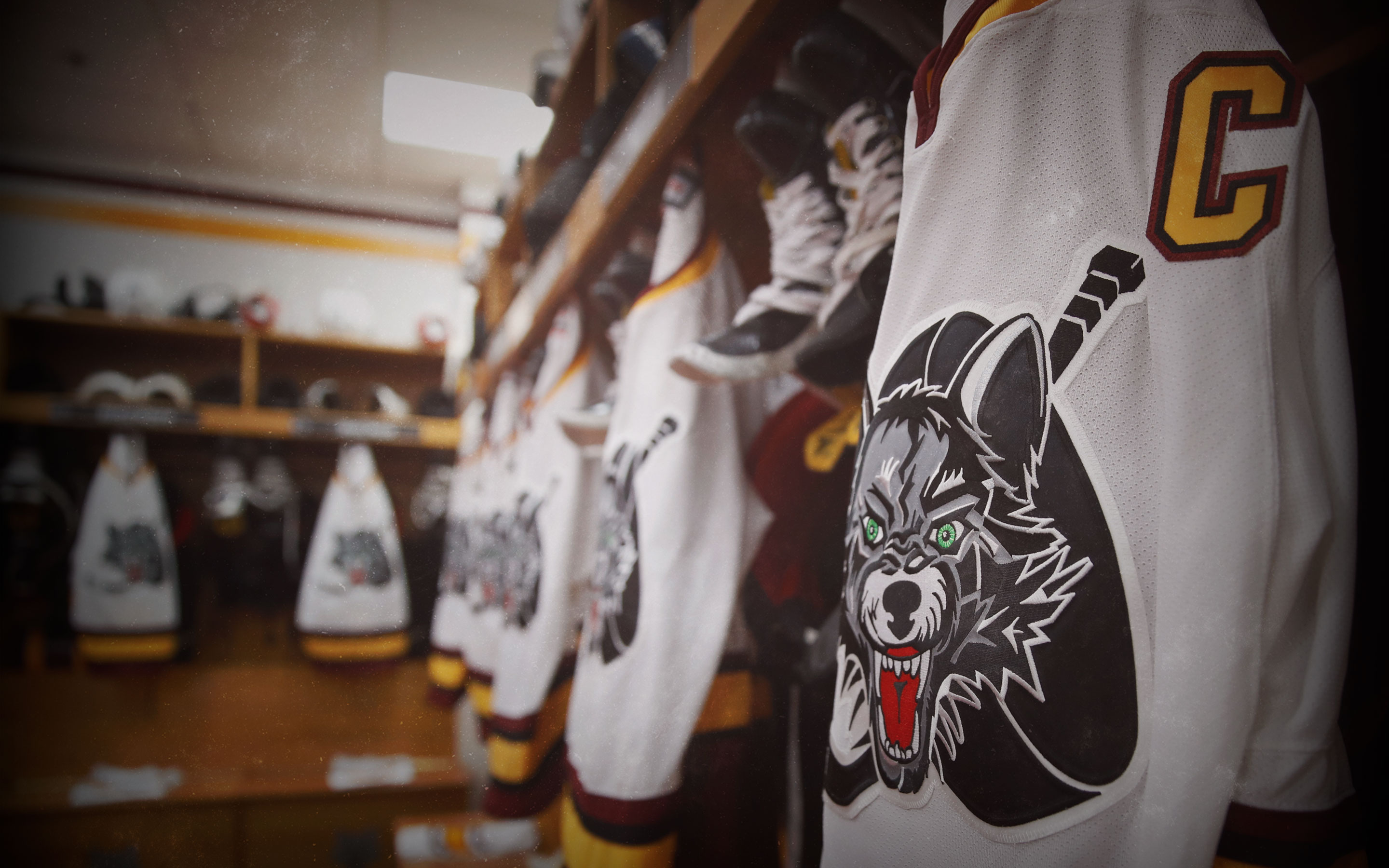 4b4899b1 Free Desktop Wallpapers & Downloads - Chicago Wolves